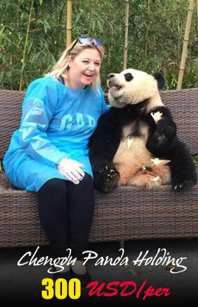 2016 DuJiangYan Panda Holding Cost From Chengdu