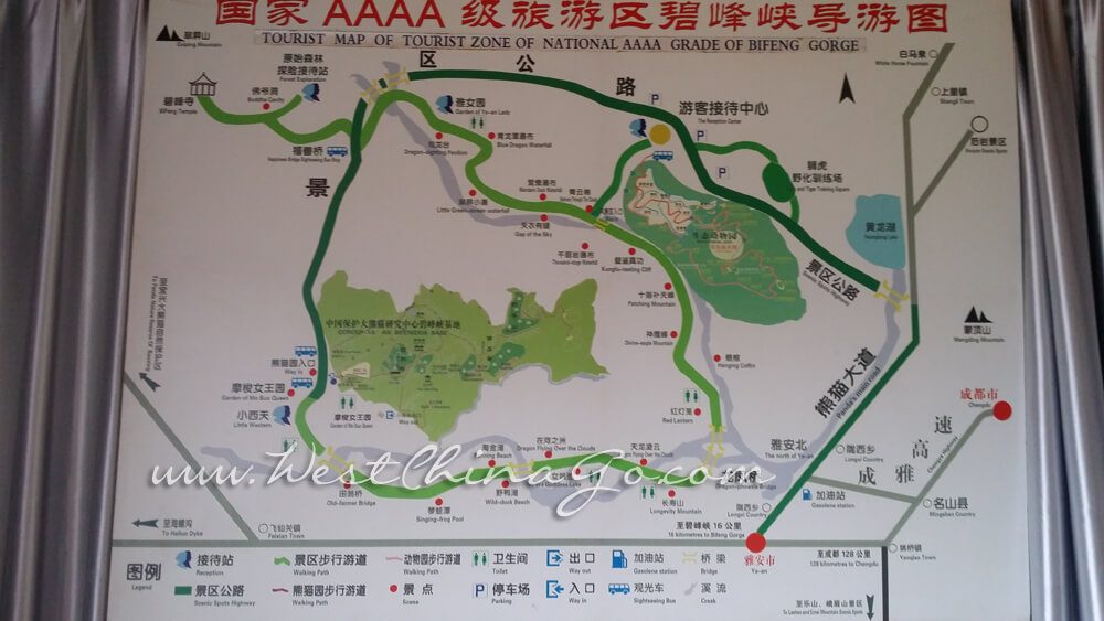 Ya'An Bifengxia Wild Life Park