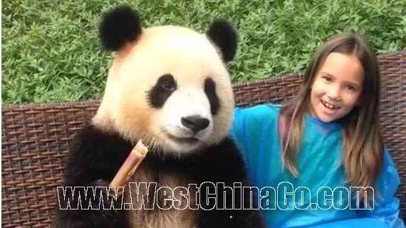 2016 ChengDu Panda Holding