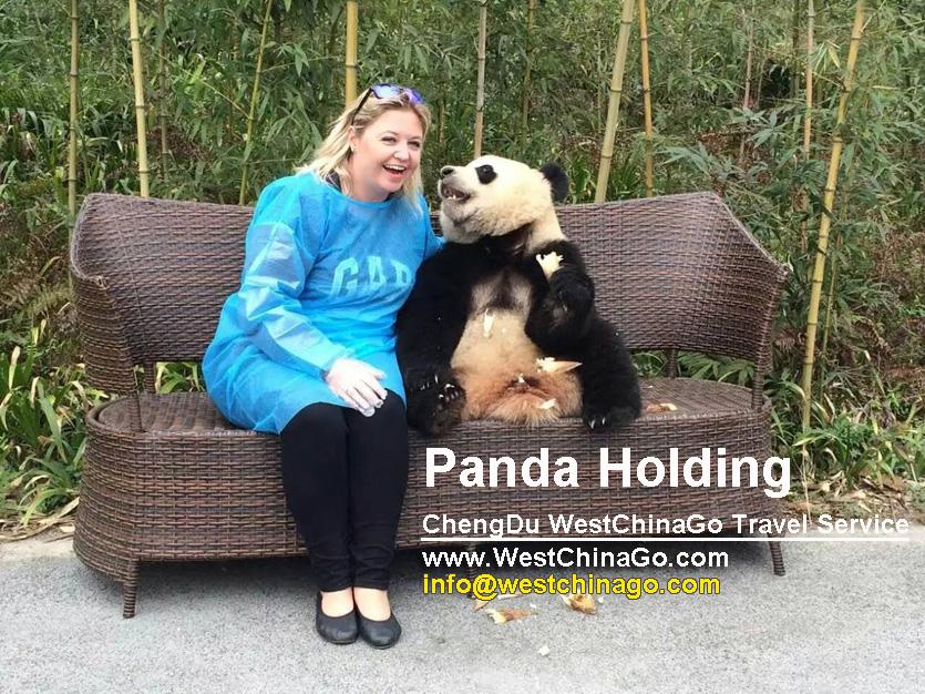 china panda picture