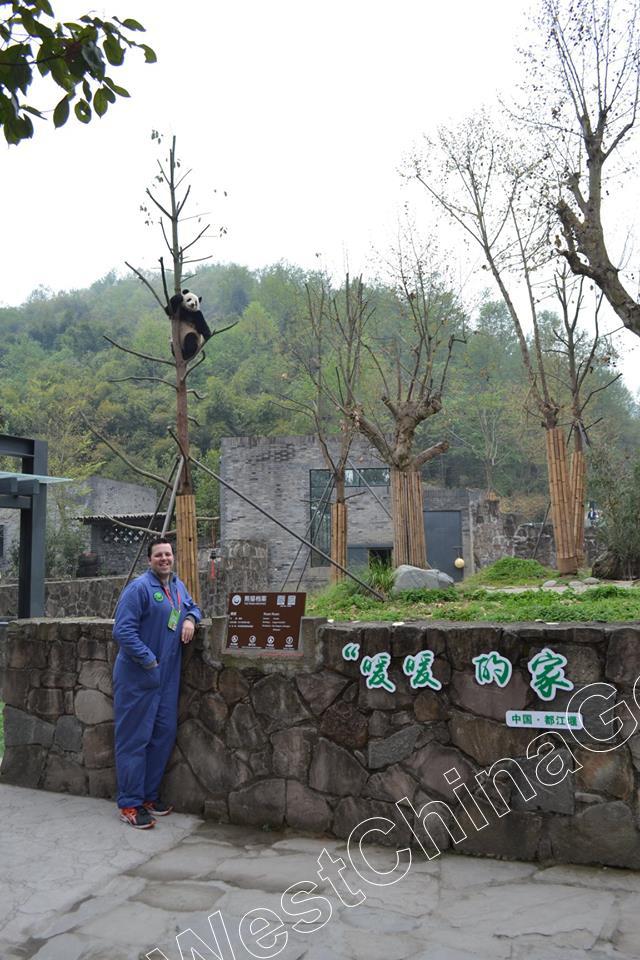 chengdu tour