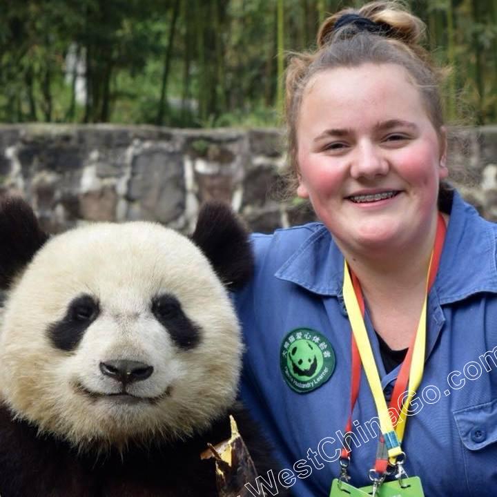 dujiangyan panda hug