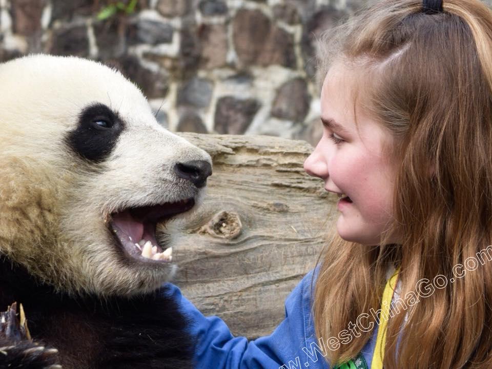 chengdu photo taking with panda holding