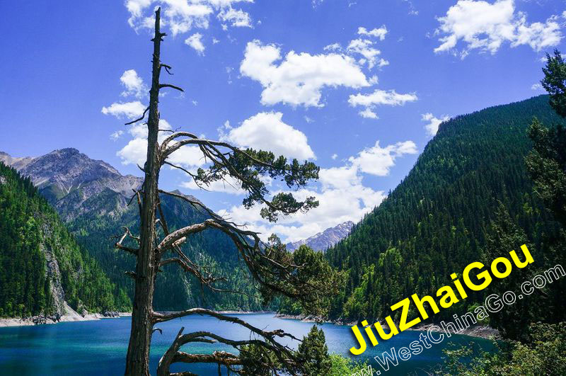 JiuZhaiGou Tour, Travel Guide