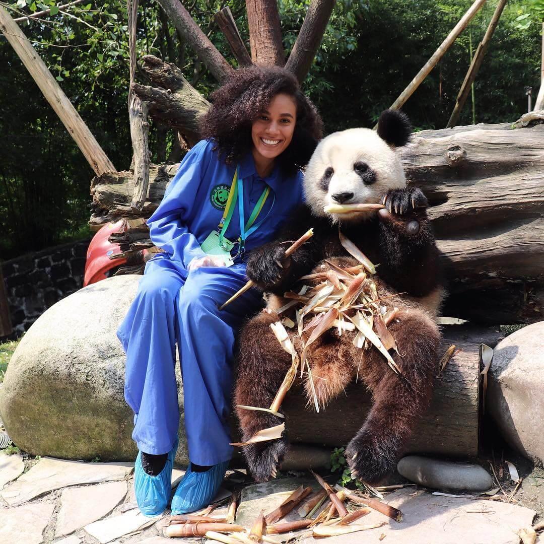 china dujiangyan panda hug