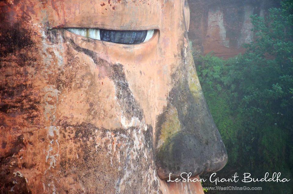 China LeShan Giant Buddha Tour from chengdu