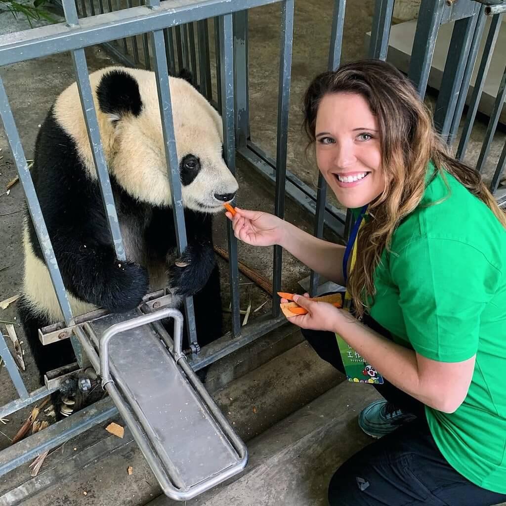 1 day dujiangyan panda volunteer tour