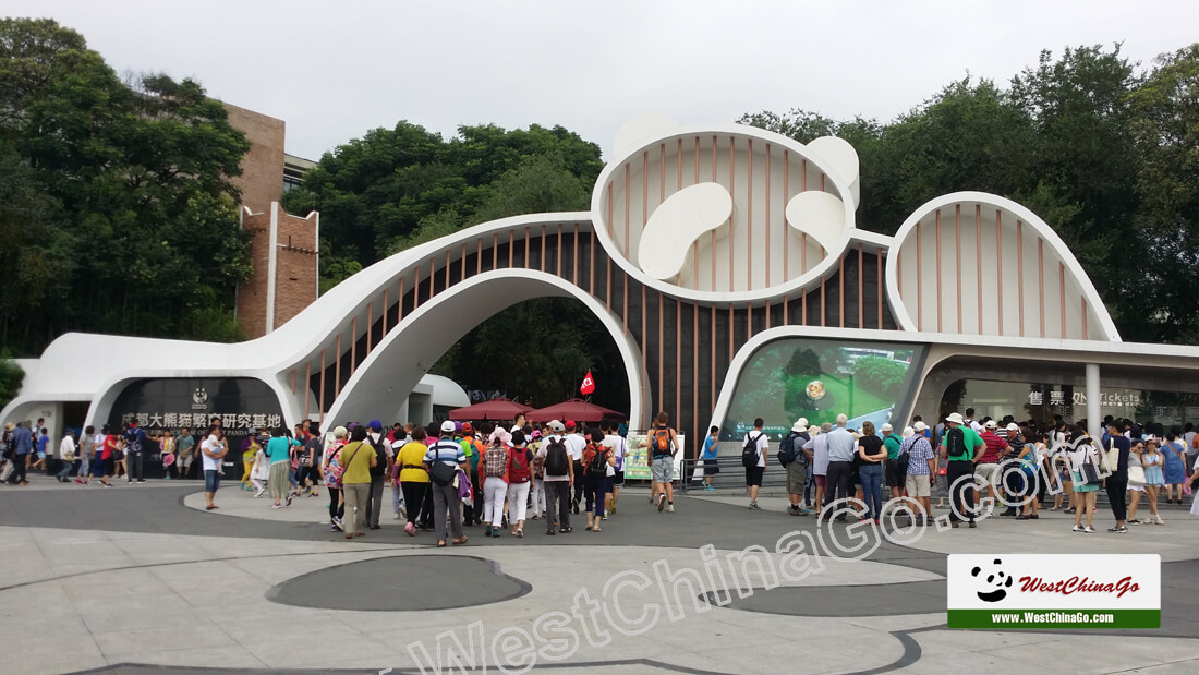 Chengdu Research Base of Giant Panda Breeding tour
