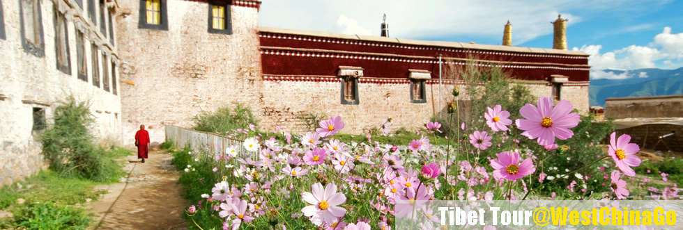 tibet0113e