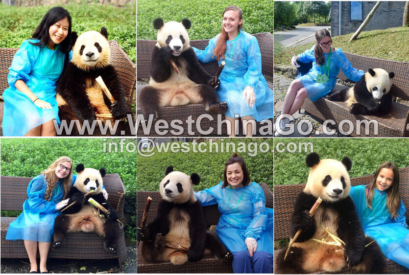 chengdu photo taking with panda holding