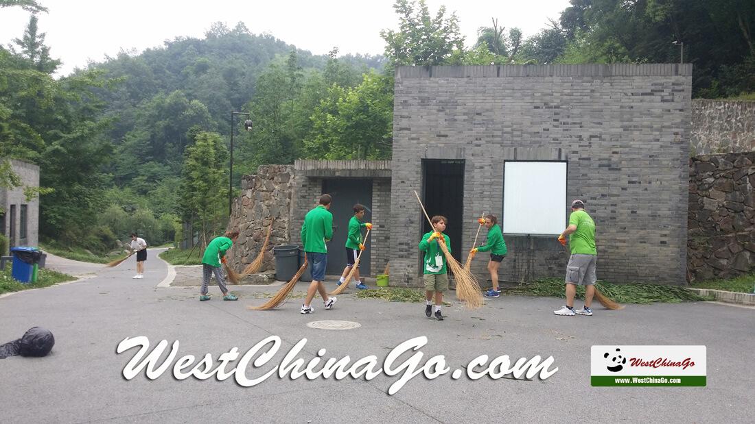 Dujiangyan Panda volunteer Tour