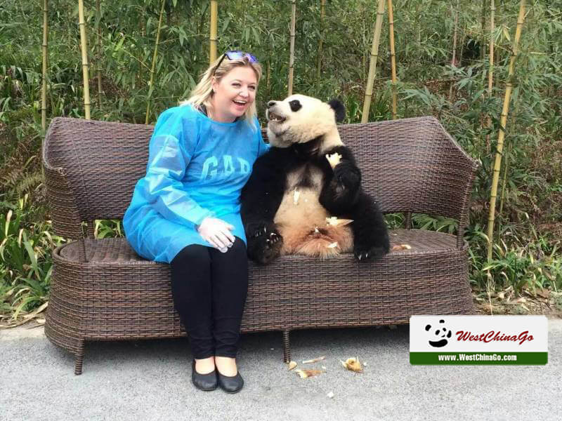2017 Chine Chengdu photo avec panda