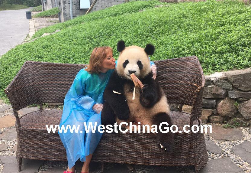 dujiangyan panda holding,hug