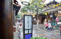 chengdu tour attractions-KunZhai Alley
