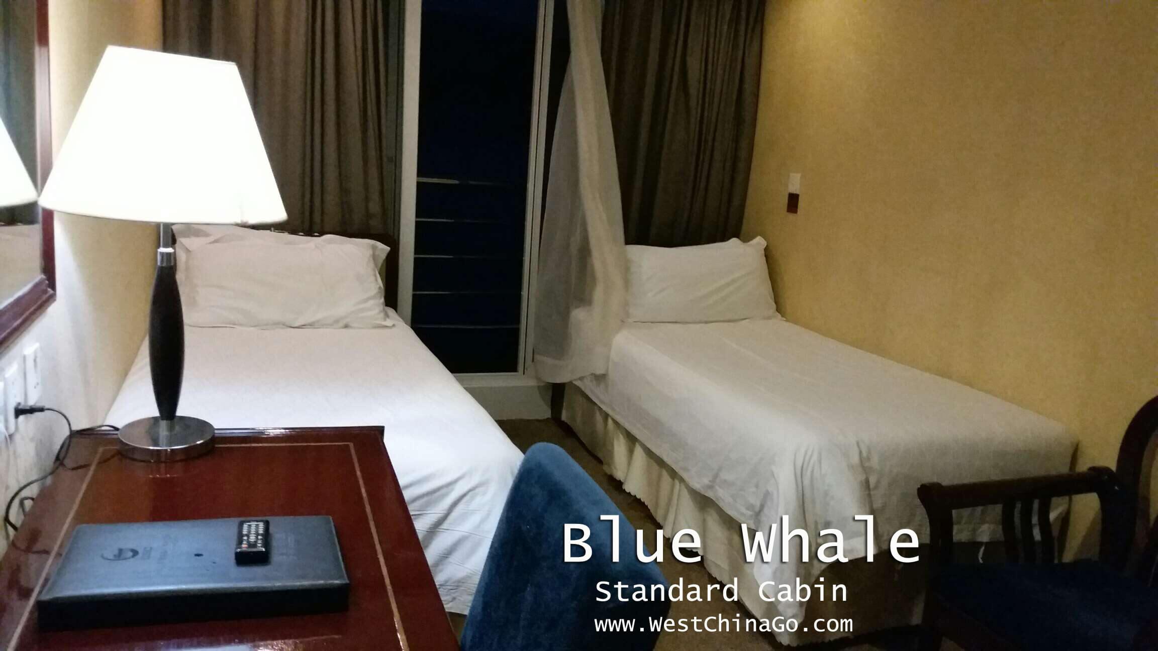 yangtze blue whale