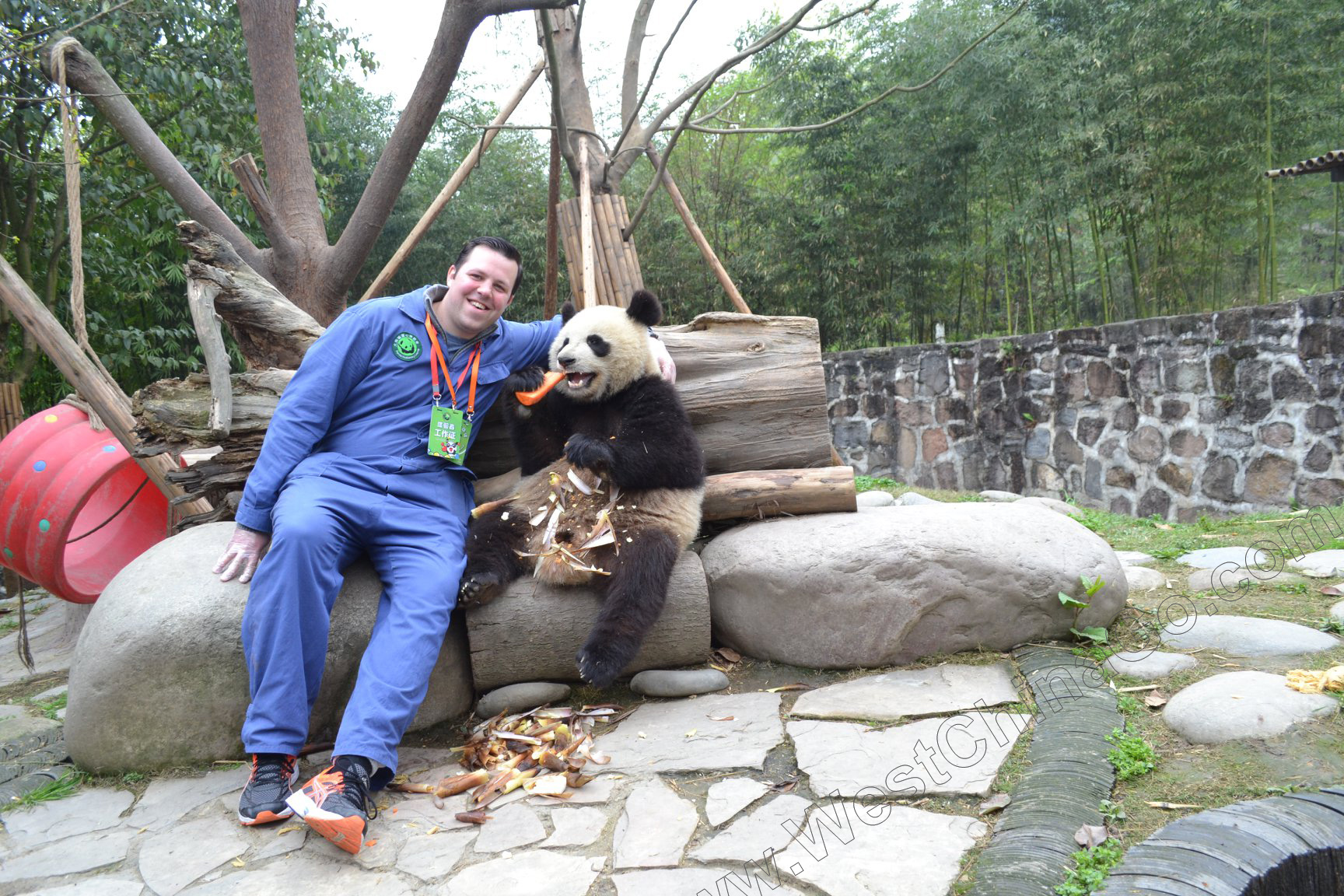 china chengdu photo with panda