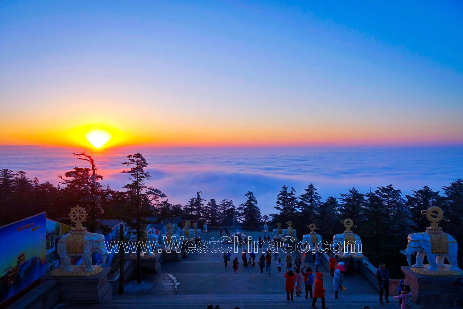 2-Day Leshan Giant Buddha+Mount Emei  Tour Plus Unique Tea Plantation Visit