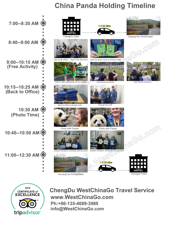 china chengdu panda holding timeline