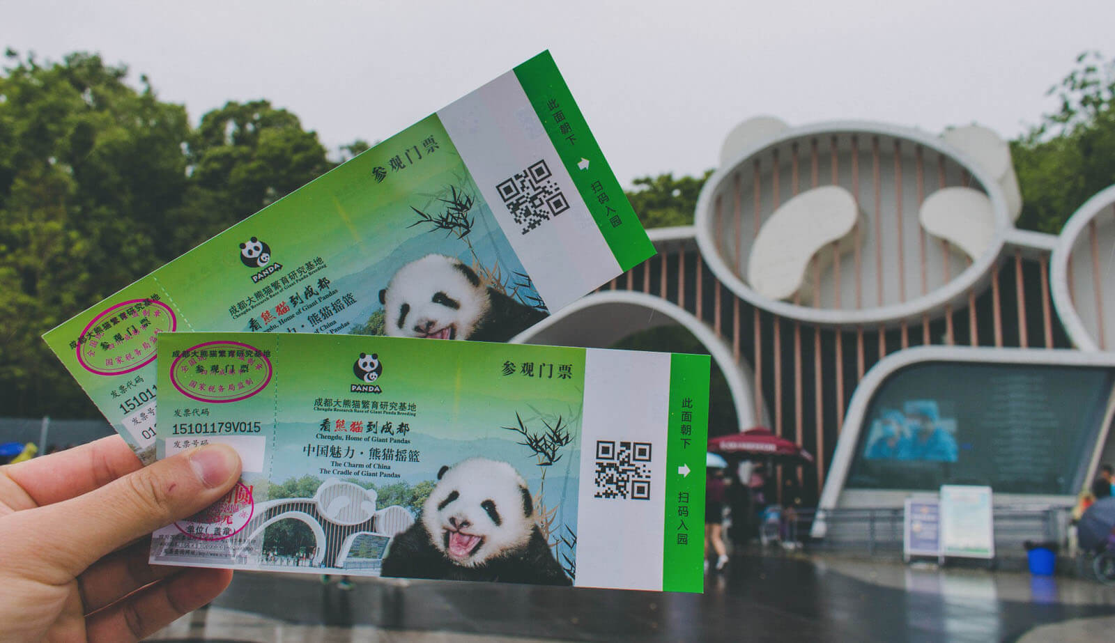 China Chengdu Research Base of Giant Panda Breeding