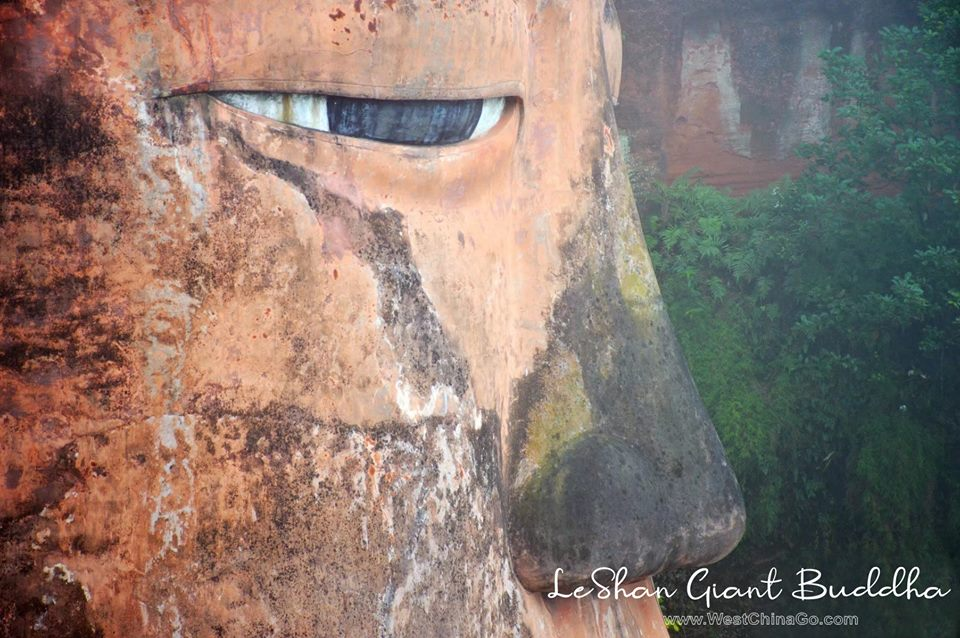 China LeShan Giant Buddha Tour from chengdu