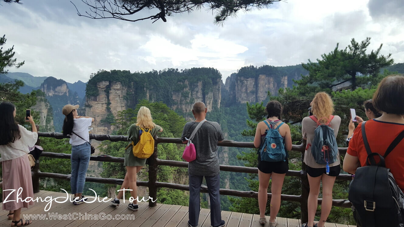 How to plan Zhangjiajie National Forest Park Tour