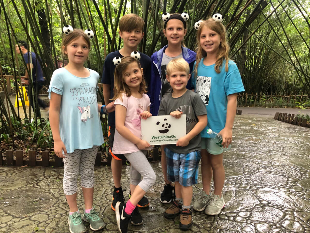 chengdu panda reserve tours