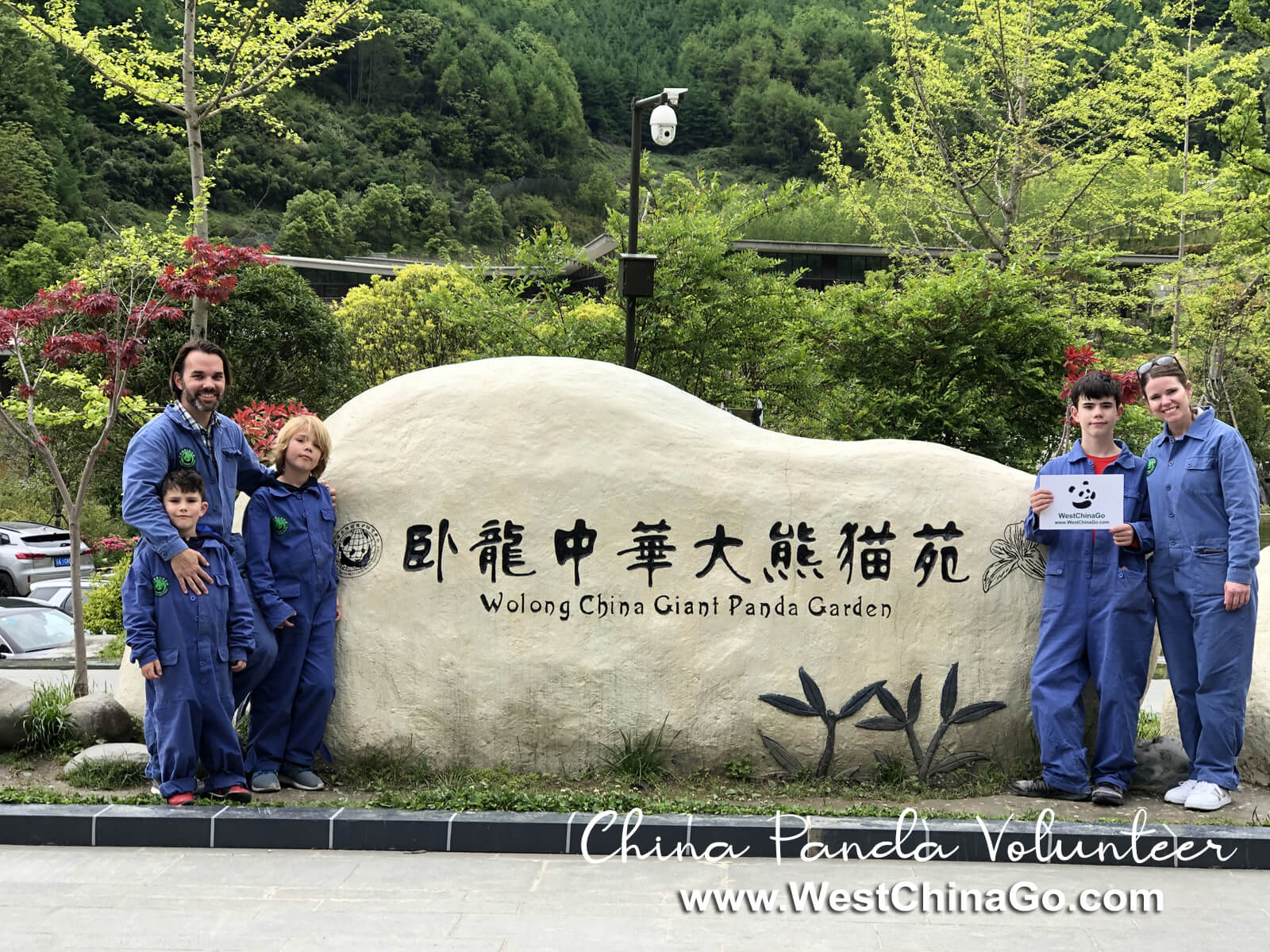 wolong panda reserve volunteer