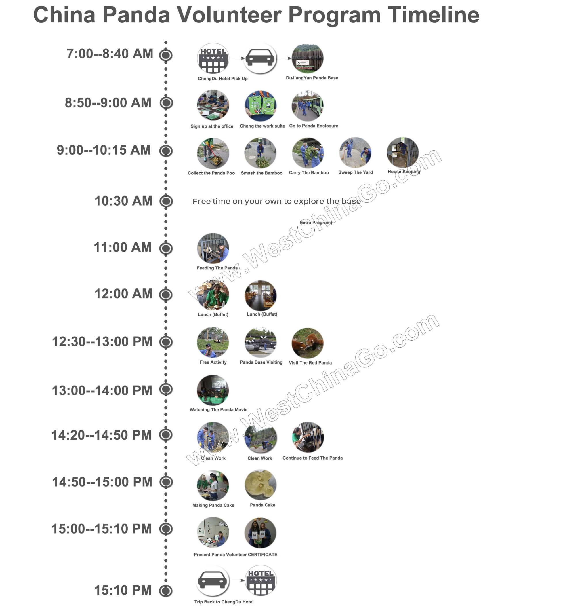 Dujiangyan Panda Volunteer Timeline 2021
